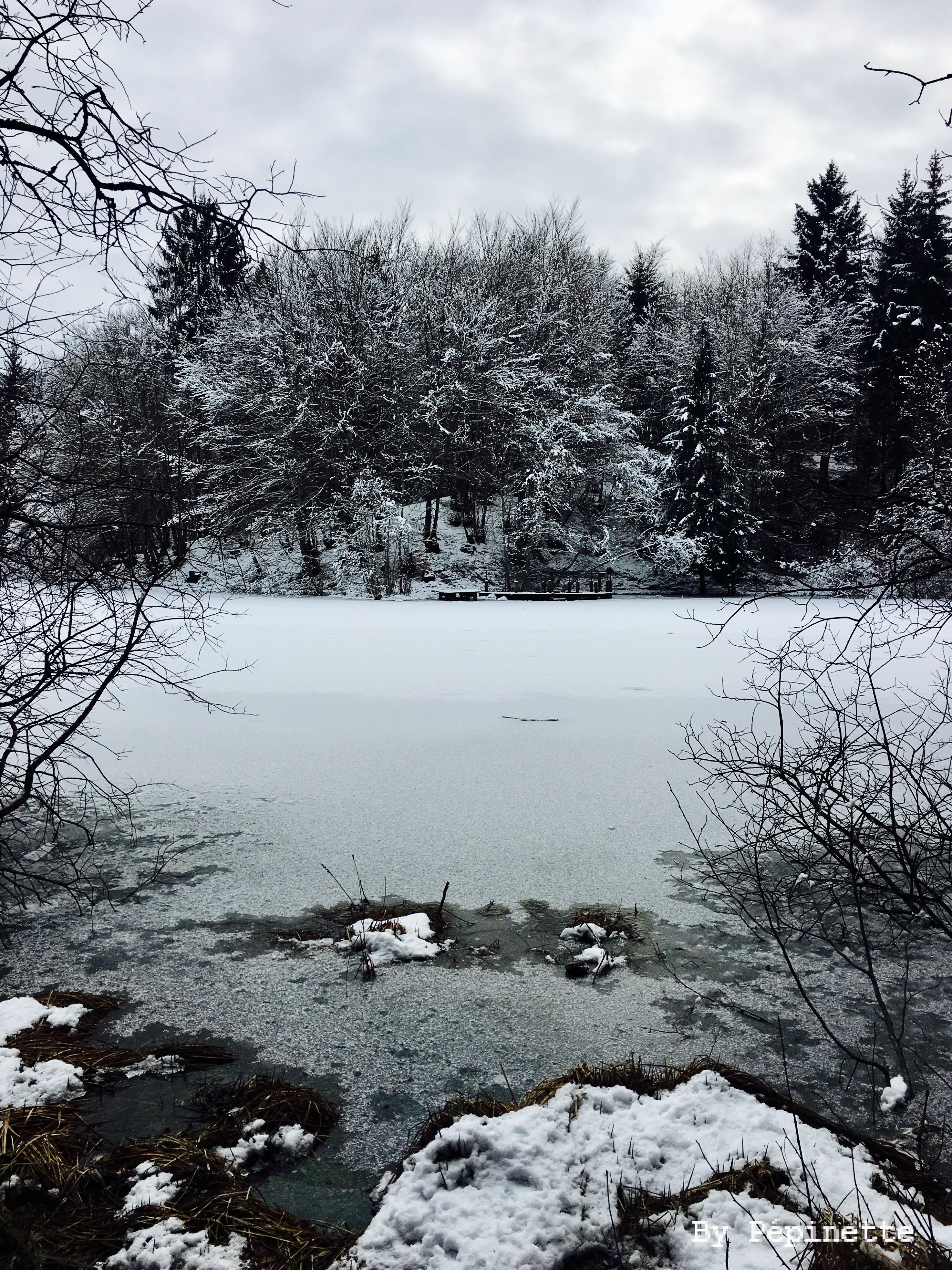 La beauté hivernale du Lac Noir gelé (Saint Paul en Chablais)